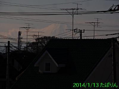 51025011_7