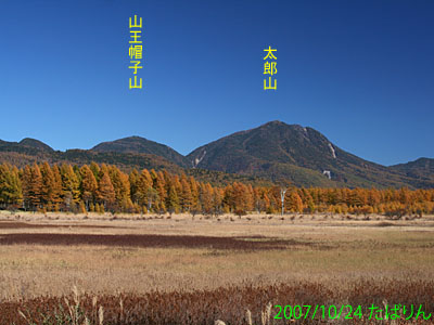 odashiro_1.jpg