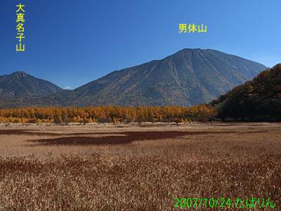 odashiro_3.jpg