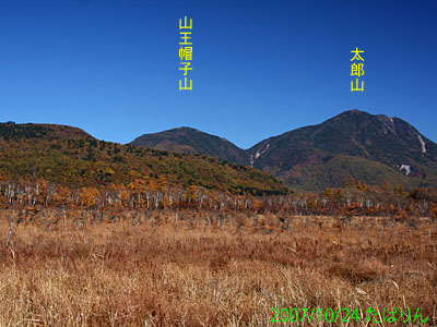 senjougahara_3.jpg