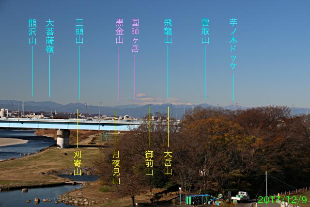futakotamagawa_5.jpg