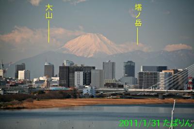 kokusaisen_2.jpg