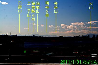 kokusaisen_3.jpg