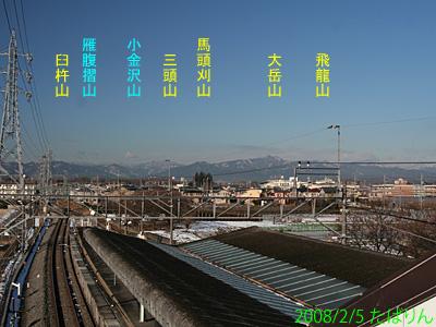 seibutachikawa_3.jpg