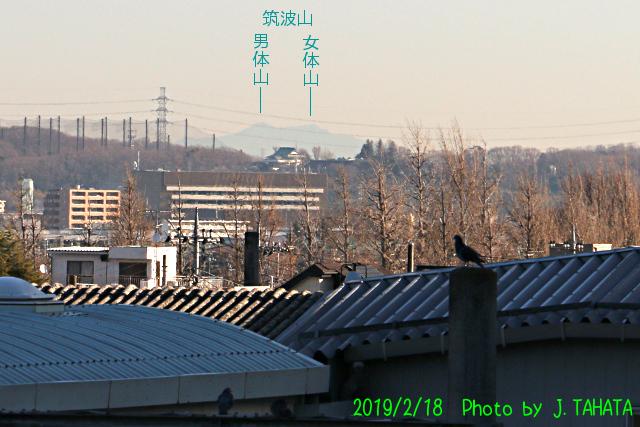 takaoeki_2.jpg