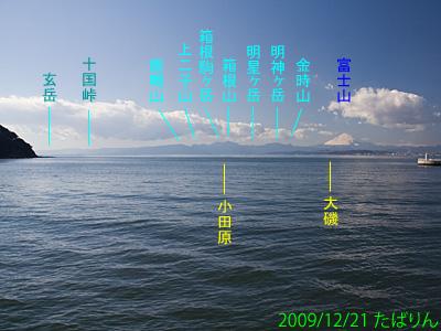 enoshimaoohashi_3.jpg
