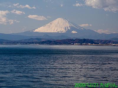 enoshimaoohashi_5.jpg