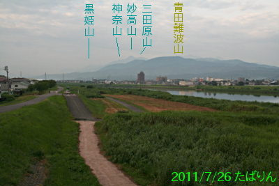 sekikawa_1.jpg