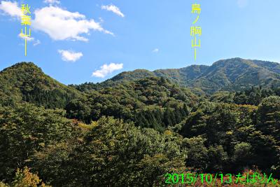 doushi_yori_2.jpg