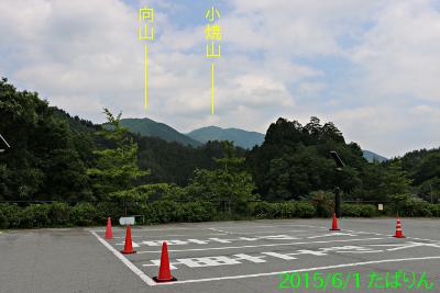 kosuge_2.jpg