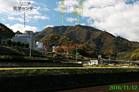 tsuru_1.jpg
