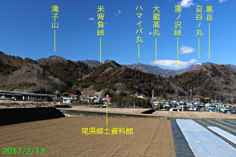 tsuru_8.jpg