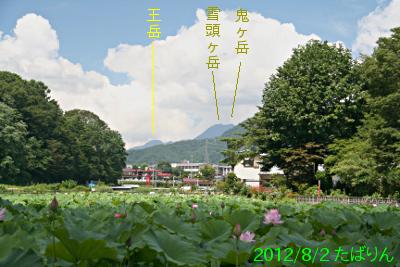 asumiko_1.jpg