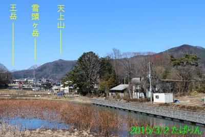 asumiko_3.jpg