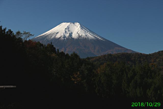 fudouyu_1.jpg