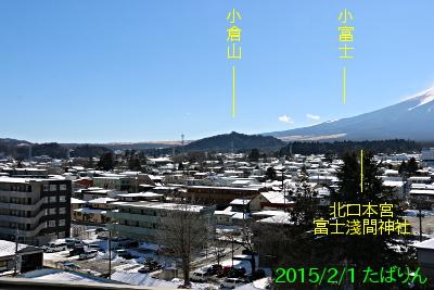 fujisaneki_3.jpg