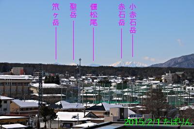 fujisaneki_7.jpg
