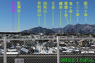 fujisaneki_8.jpg