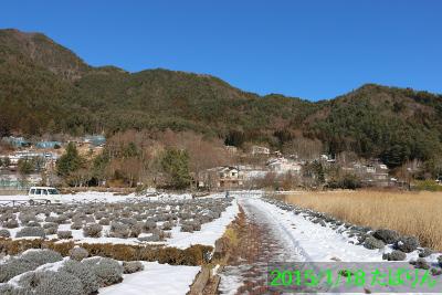 ooishi_11.jpg