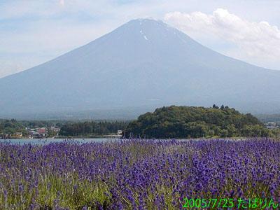 ooishi_4.jpg