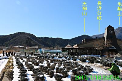 ooishi_7.jpg
