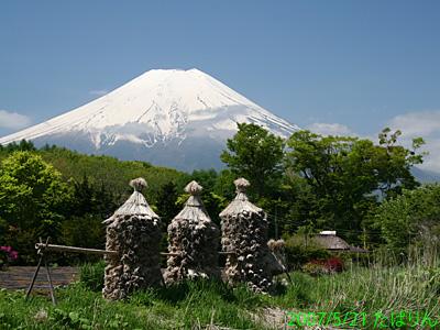 shibokusa_1.jpg