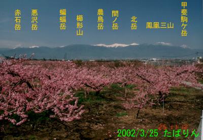 asakawabashi_1.jpg