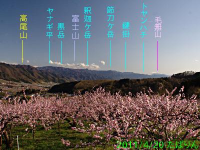 fukuori_1.jpg