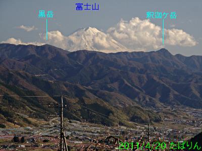 fukuori_3.jpg