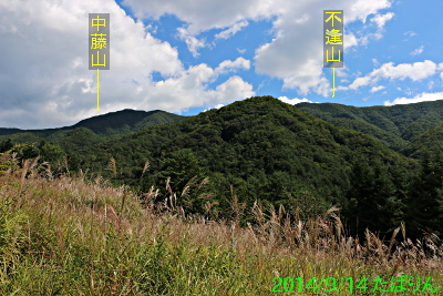 kamiashigawa_6.jpg