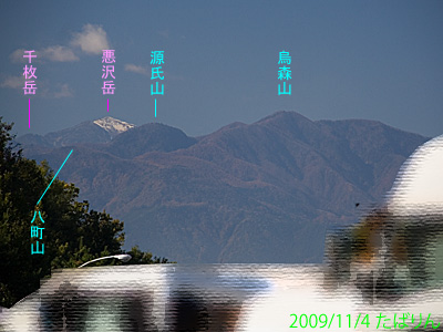 sakaigawapa_6.jpg