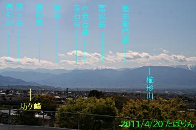 shakadou-m_1.jpg