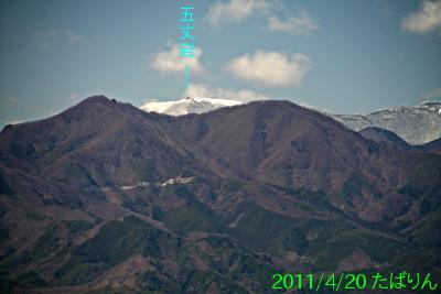 shakadou-m_11.jpg