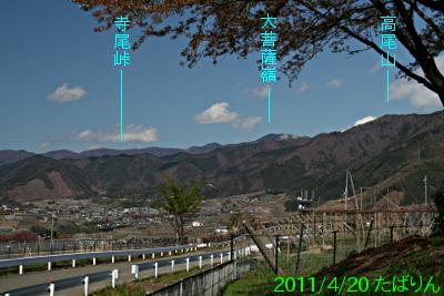 shakadou-m_9.jpg