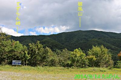 suzuran_2.jpg