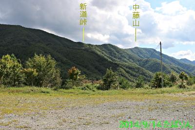 suzuran_3.jpg