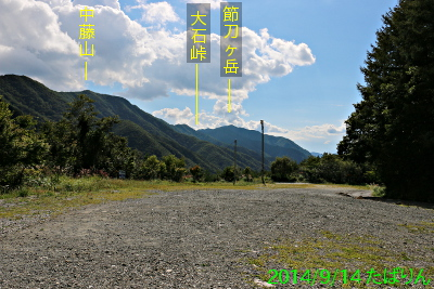 suzuran_4.jpg