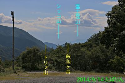 suzuran_5.jpg