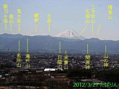 akasakadai_4.jpg