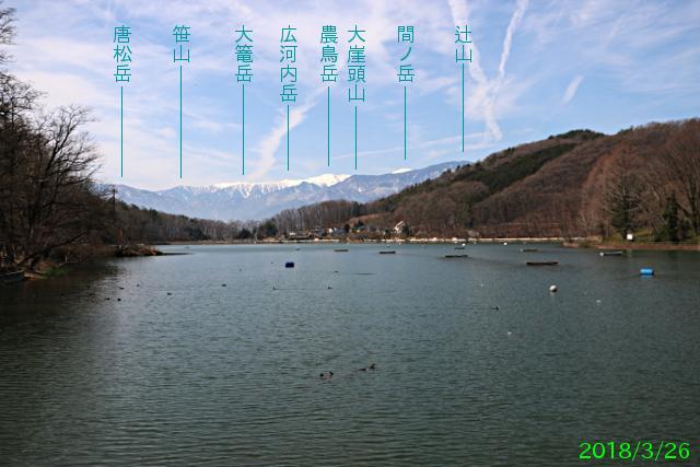 chiyodako_4.jpg