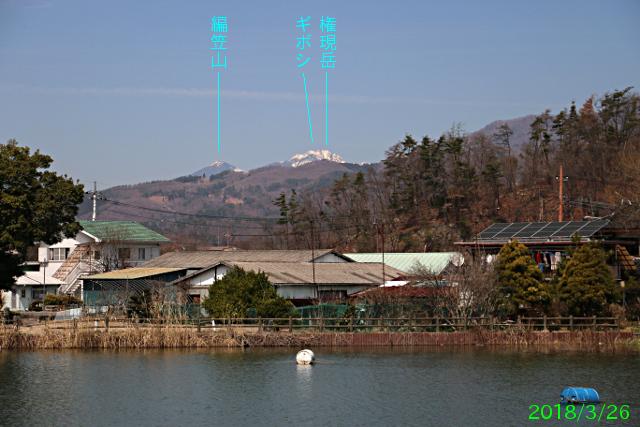 chiyodako_6.jpg