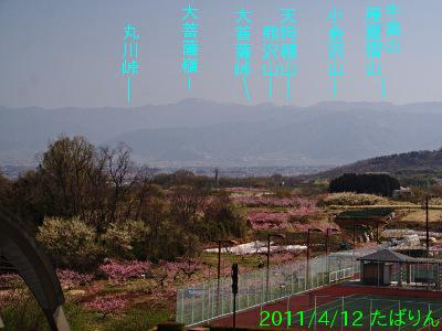 sone_6.jpg