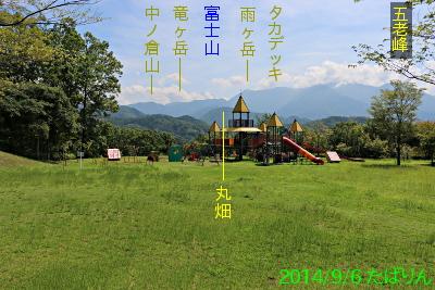 fureai_1.jpg