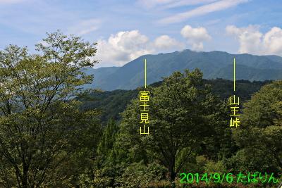 fureai_10.jpg
