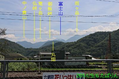 kaiiwama_1.jpg