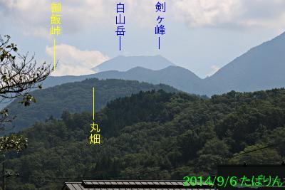 kaiiwama_3.jpg