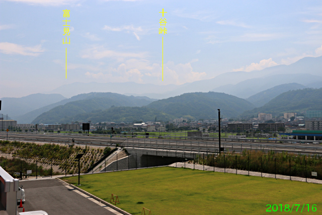 michi_fujikawa_2.jpg