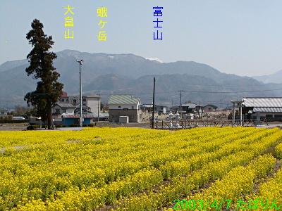 tenjinnakajou_1.jpg