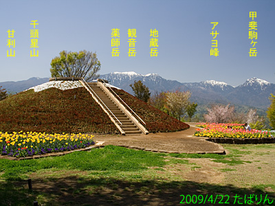 heidi_19.jpg