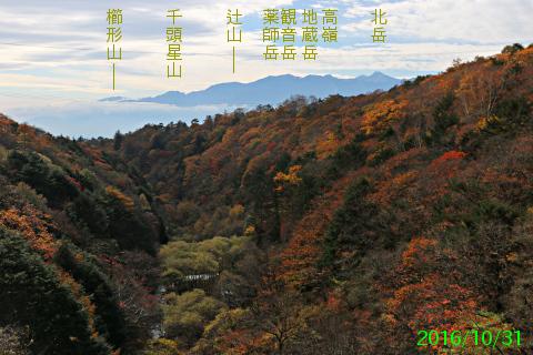 higashizawa_7.jpg